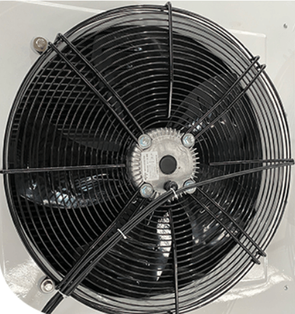 The overhead design of the fan